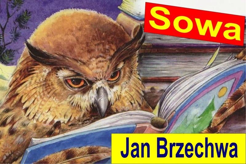 Ян Бжехва «Сова»