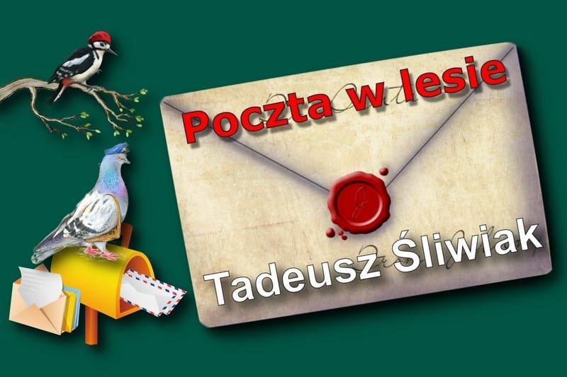 Тадеуш Сливяк «Лесная почта»