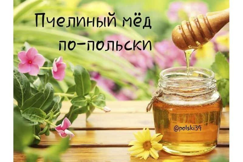 Пчелиный мёд по-польски