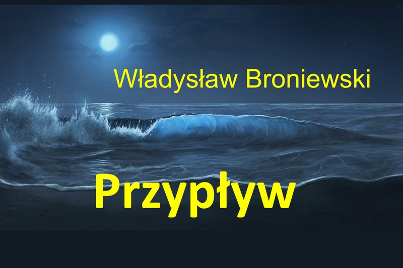 Владислав Броневский «Прилив»