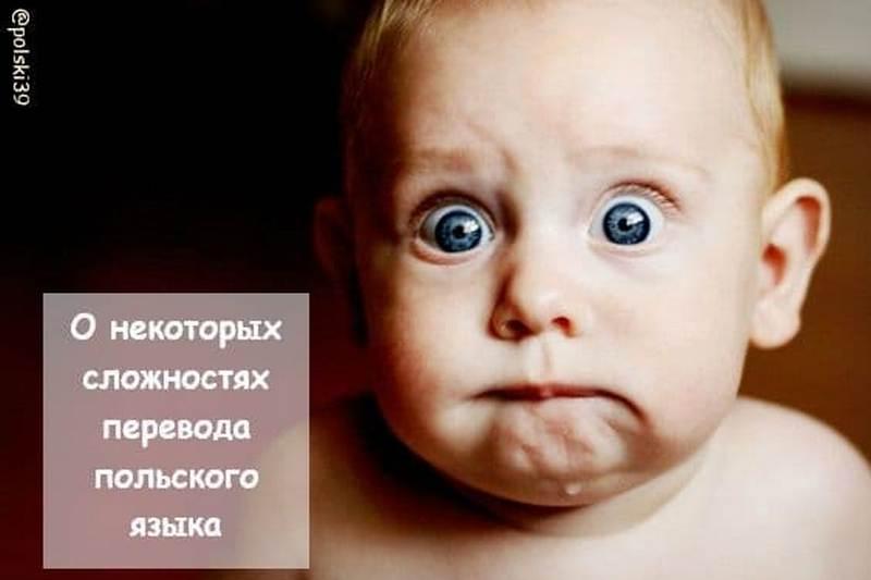 О некоторых сложностях перевода польского языка
