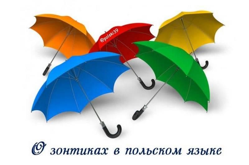 О зонтиках в польском языке